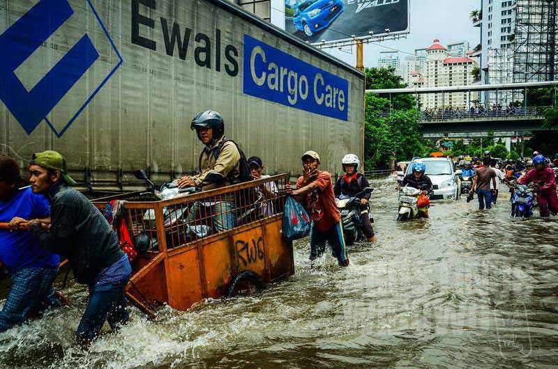 5.Cargo Care