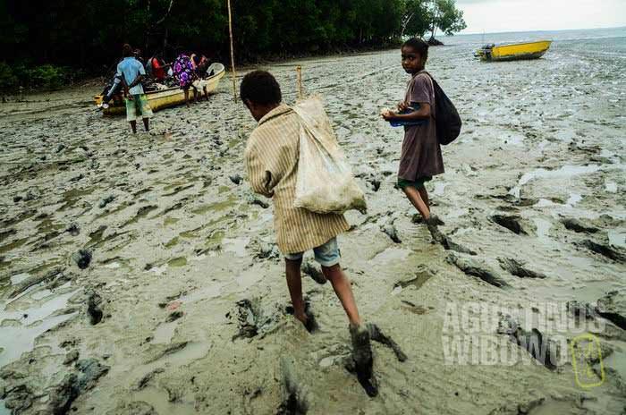 Pantai Ber dipenuhi lumpur (AGUSTINUS WIBOWO)