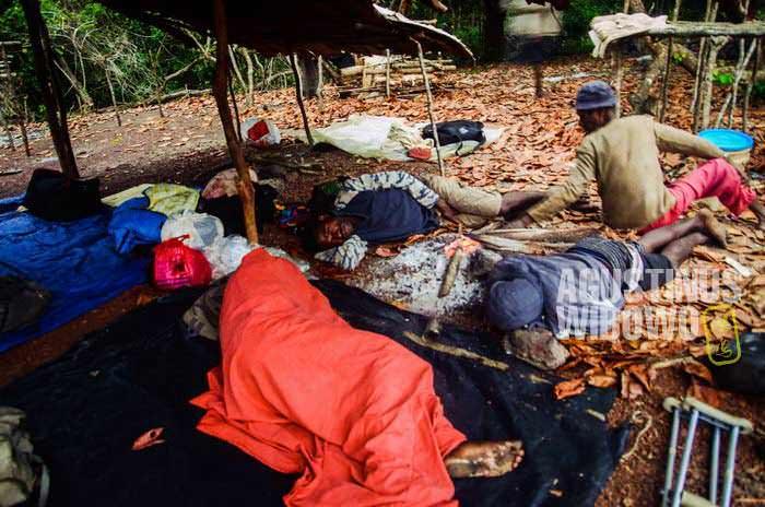 Hidup di hutan rimba Papua Nugini membutuhkan fisik yang sangat tangguh (AGUSTINUS WIBOWO)