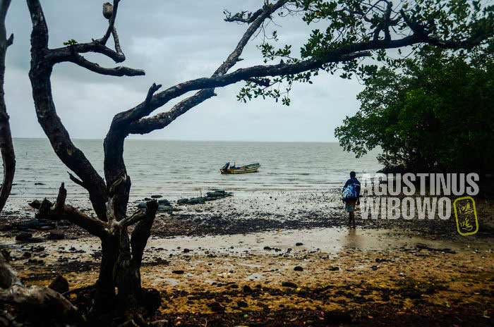 Pulau Strachan (AGUSTINUS WIBOWO)