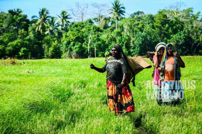 Mama Ruki menari hula-hula sehabis pulang dari kebun (AGUSTINUS WIBOWO)