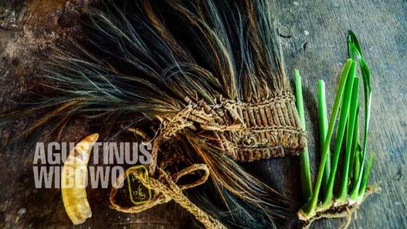 Peralatan seorang penyihir: topi bulu kasuari, gigi buaya, tanaman