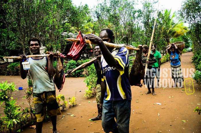Warga Tais hidup dari berburu (AGUSTINUS WIBOWO)