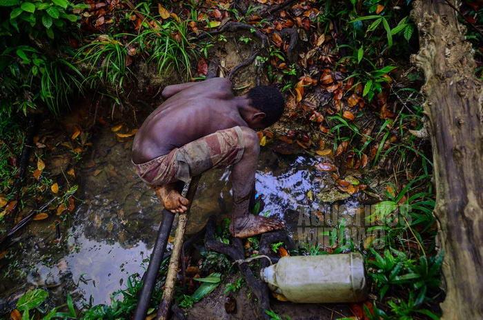 Sumber air minum yang jauh di dalam hutan.