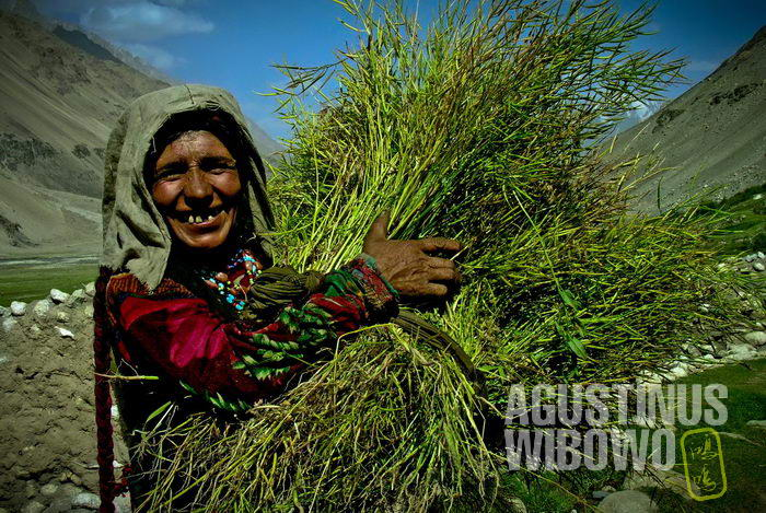 An old Wakhani women smilling happily about her good wheat harvest.