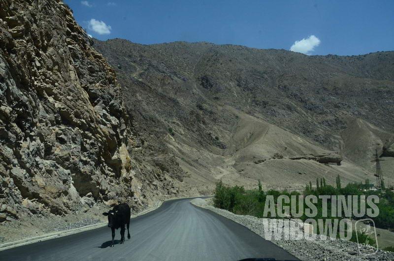 Infrastruktur jalan sangat dibutuhkan oleh Tajikistan untuk melintasi pegunungan tinggi yang mendominasi negaranya.