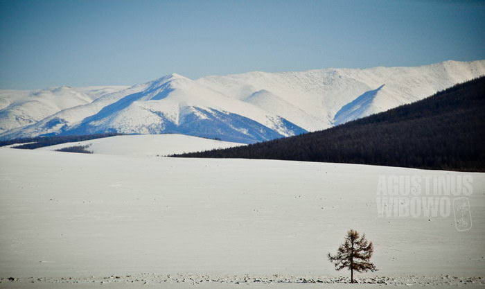 Lonely Planet (Mongolia, 2009)