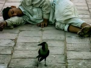 1pic1day-131230-pakistan