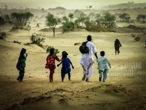 1pic1day-140120-thar-desert