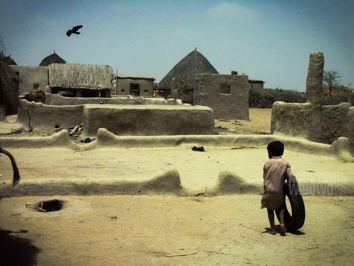 1pic1day-140122-thar-desert