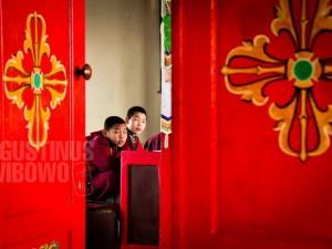 1pic1day-140203-mongolia