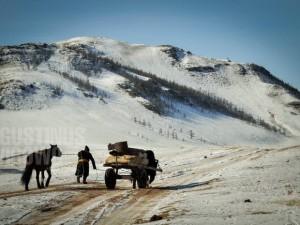 1pic1day-140204-mongolia