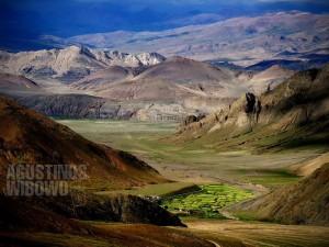 1pic1day-140219-tibet