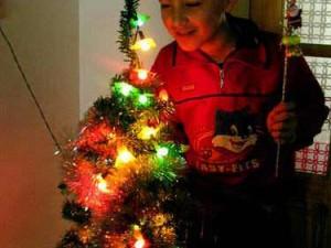 Pohon natal di hari Idul Adha (AGUSTINUS WIBOWO)