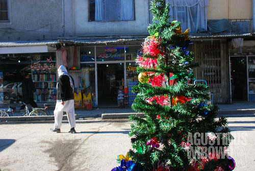 A big Christmas tree in Chicken Street