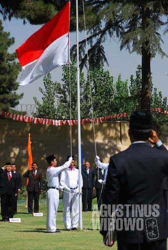 Red-and-White in Kabul