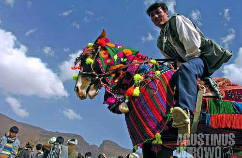 A Hazara farmer rides his beautifully decorated horse, in a harvest festival in Yakawlang. Farmers from all corners of the district come with their best product to show and to share the happiness with others.