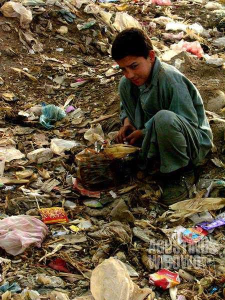 World of garbage