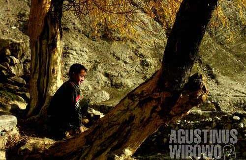 The golden autumn finally arrives in Vrang