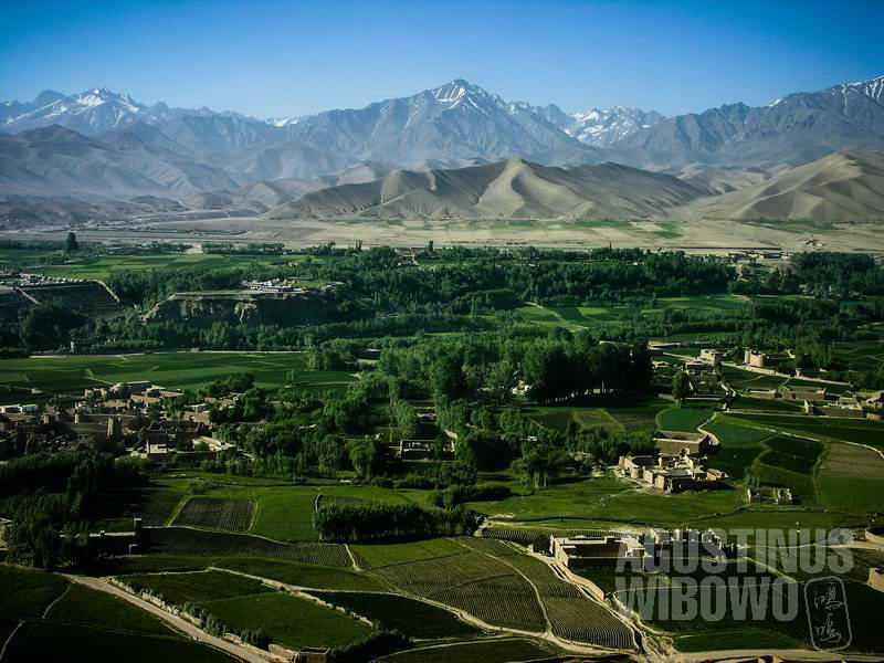 Hijaunya lembah Bamiyan (AGUSTINUS WIBOWO)