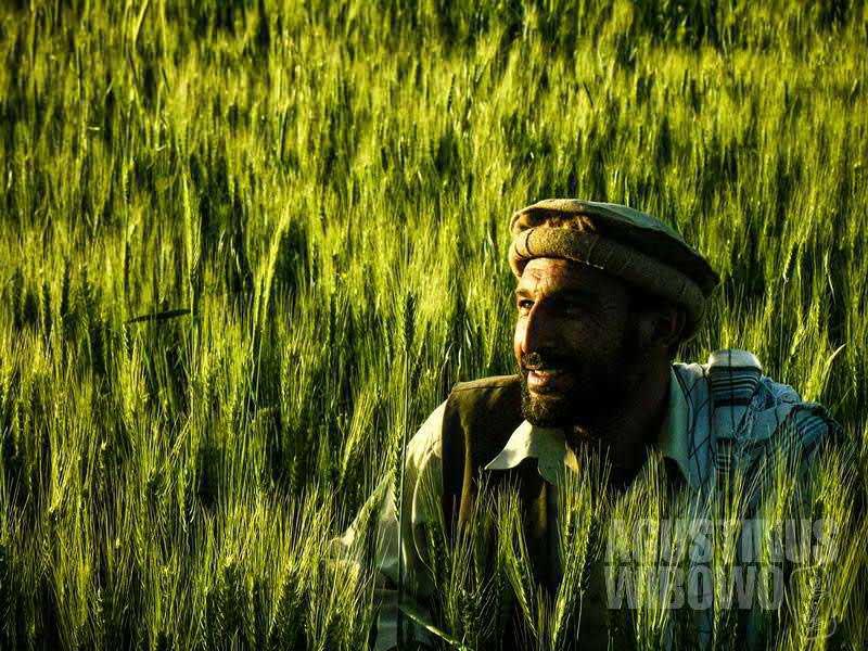 Lelaki Tajik ini sungguh mirip Ahmad Shah Massoud, pahlawan nasional Afghanistan. (AGUSTINUS WIBOWO)