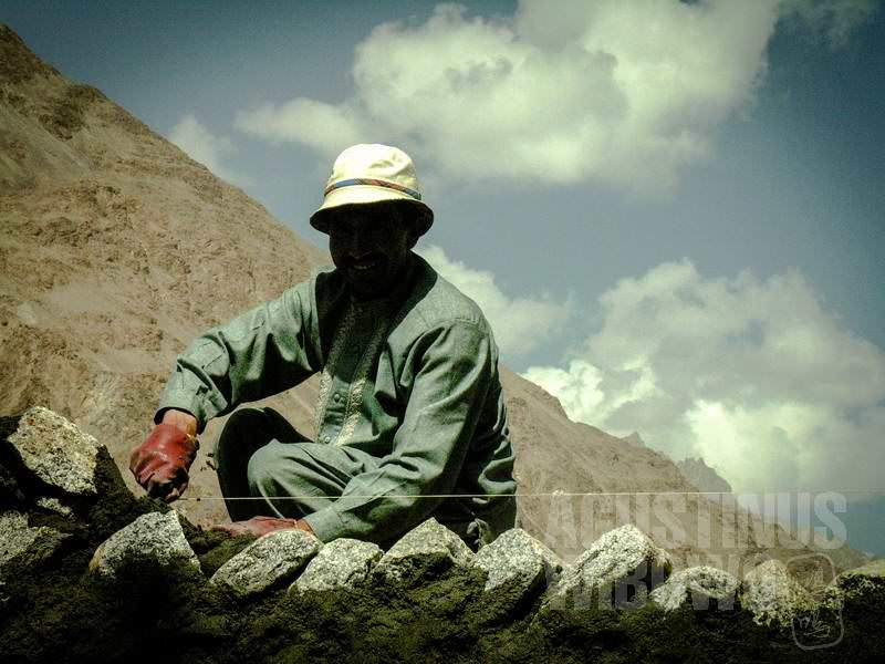 8.Pekerja dari Pakistan (AGUSTINUS WIBOWO)