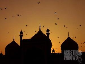 Masjid Juma New Delhi - senangnya bisa memotret dengan leluasa lagi. (AGUSTINUS WIBOWO)