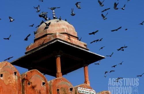 Jaipur, kota merah jambu. (AGUSTINUS WIBOWO)