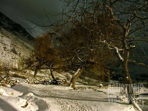 Puncak gunung Sarang Elang yang sunyi, dengan salju tebal membungkus segala penjuru (AGUSTINUS WIBOWO)