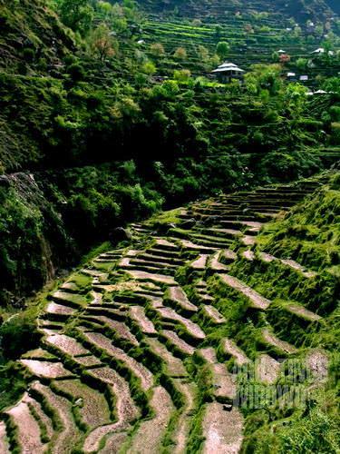 Di tanah Kashmir yang indah ini hidup pula suku petarung (AGUSTINUS WIBOWO)