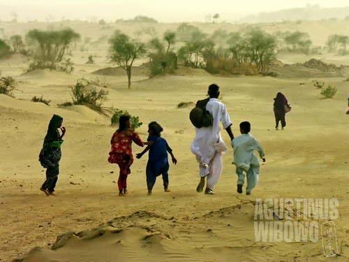 Pulang, kembali ke tengah kepulan debu di gurun Thar (AGUSTINUS WIBOWO)