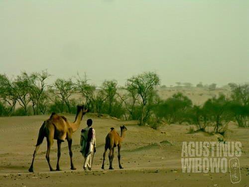 Berjalan mencari air (AGUSTINUS WIBOWO)