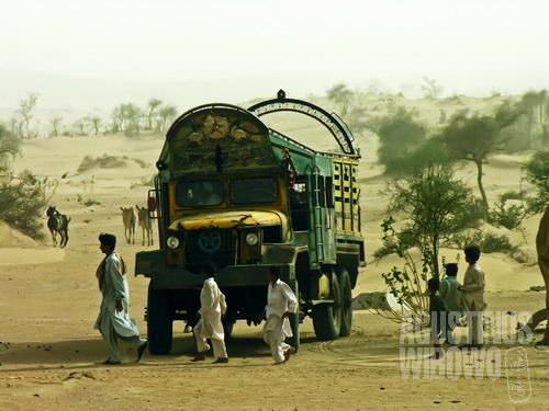 Kekra, kendaraan di gurun pasir, akhirnya datang selelah sekian lama dinanti-nantikan (AGUSTINUS WIBOWO)