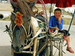Kereta kuda di Kargilik. Sayang, bukan kendaraan menuju Tibet. (AGUSTINUS WIBOWO)